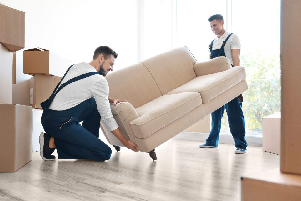 Dad Bod Moving Co.